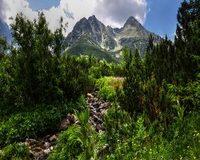 Turistické trasy Vysoké Tatry v lete